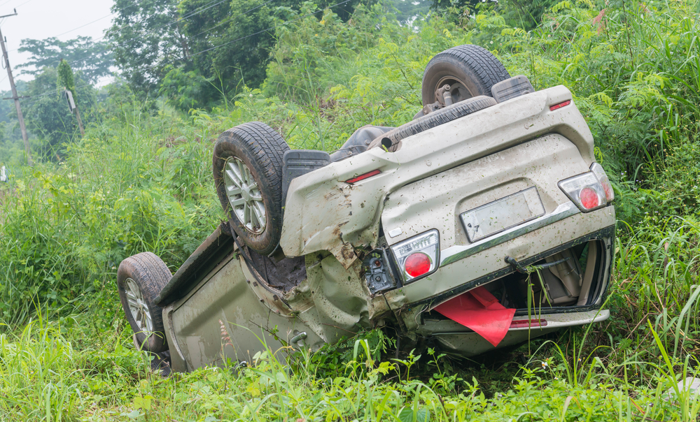 Macon — Animal in Road Causes Rollover Accident on Mumford Road